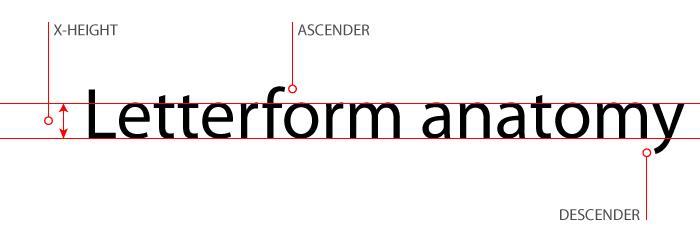 letterform-anatomy